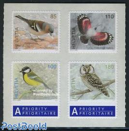 Birds 4v s-a