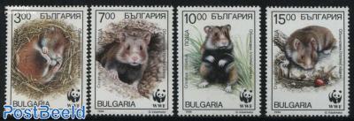 WWF, Hamster 4v