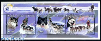Polar dogs 3v m/s