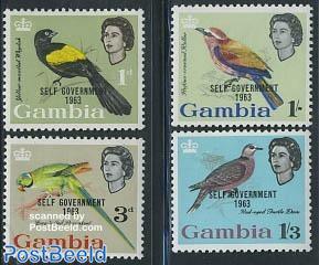 Birds, self government 4v