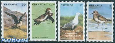 Sea birds 4v