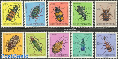 Insects 10v