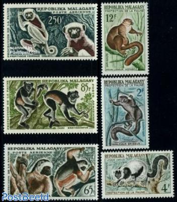 Primates 6v