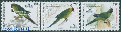 Parrots 3v