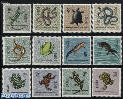 Reptiles 12v