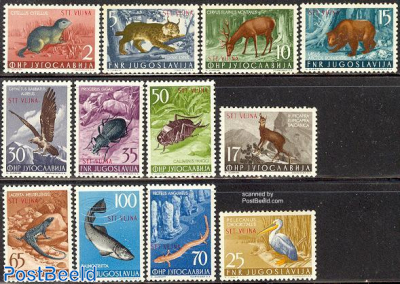 Definitives, animals 12v