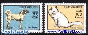 Dog and cat 2v