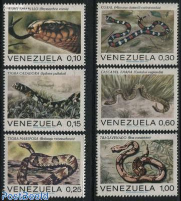 Snakes 6v