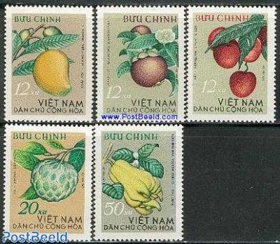 Tropical fruit 5v