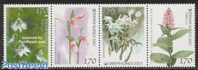 Orchids 4v [:::]